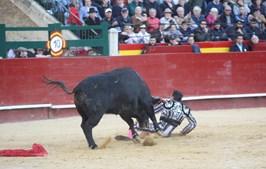 Matador Enrique Ponce foi colhido por um touro em Valência