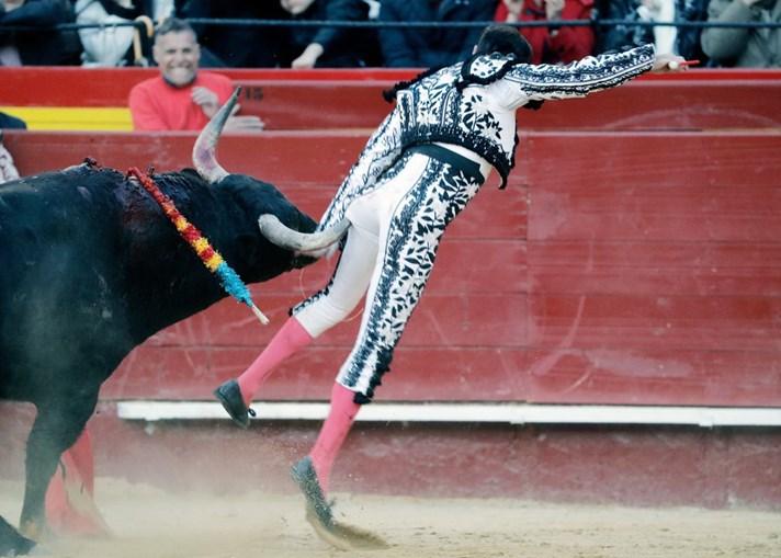 Enrique Ponce no momento em que é colhido por um touro em Valência