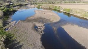Ministro do Ambiente espera ter resposta de Espanha sobre caudal do rio Tejo ainda esta semana