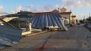 Leslie atingiu Portugal há quase um ano. Furacão provocou 71 desalojados e 120 milhões em prejuízos