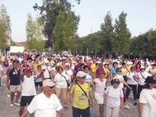 Programa Nacional de Marcha e Corrida põe 50 mil por ano a caminhar e a correr