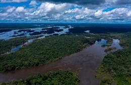 Amazónia no Brasil
