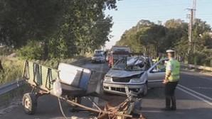 Mulher de 55 anos morre após colisão com cavalo em Beja