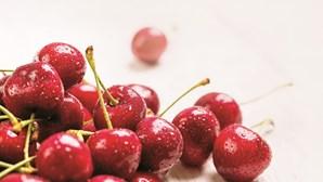 Ouro vermelho: Chegou a época das cerejas
