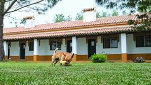 Hotel Rural Naveterra convida a passeios pelas belas paisagens alentejanas