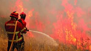 Interior Norte e Centro em risco máximo de incêndio. Temperaturas podem chegar aos 37 graus