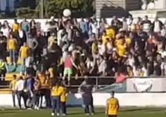 Agressões entre adeptos no final do jogo entre o Sporting Clube de Espinho e Lourosa