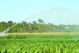 Papel dos pequenos agricultores é reconhecido pela União Europeia