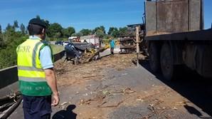 Acidente ocorreu na EN342, em Miranda do Corvo