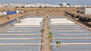 Algarve produz 95% do sal marinho do País