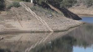Escassez de chuva pode deixar Portugal comparável ao Norte de África