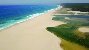 Lagoa fechada ao mar provoca morte de peixes em Sesimbra