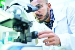 Mieloma: a doença que destrói ossos