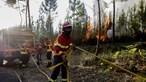 Incêndios no centro do País já fizeram 30 feridos