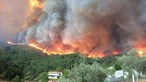 'Estava rodeada de lume. Calhou cá estar o meu filho': População em Proença-a-Nova preparada para o pior