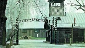 """Papa pede fim de """"atrocidades"""" como o Holocausto"""