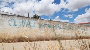 Exposição aos pesticidas lança medo à população de Alqueva