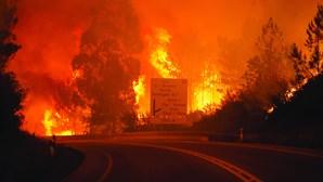 Presidente da Cruz Vermelha nega responsabilidade na seleção de casas a reconstruir após incêndio em Pedrógão Grande