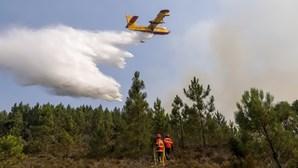 """""""Só peço que ajudem toda esta população"""": Presidente da Câmara de Mação faz apelo após incêndios"""