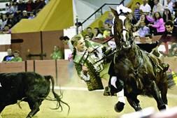 Ana Batista lidava o segundo touro da noite quando foi apertada contra as tábuas e acabou por cair do cavalo