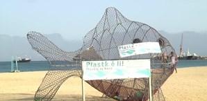 Peixes e tartarugas recolhem plástico para reciclar nas praias de Cabo Verde
