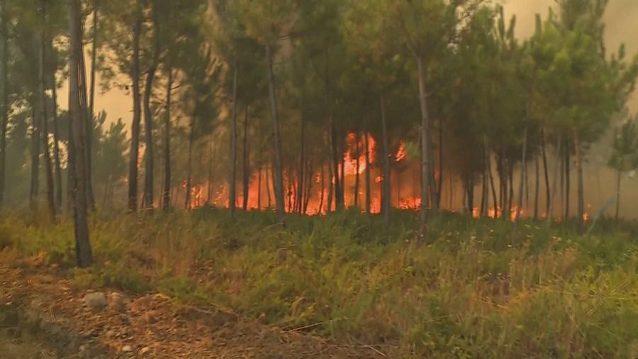 Incêndio perto de aldeias nos concelhos vizinhos de Vila de Rei e Sertã