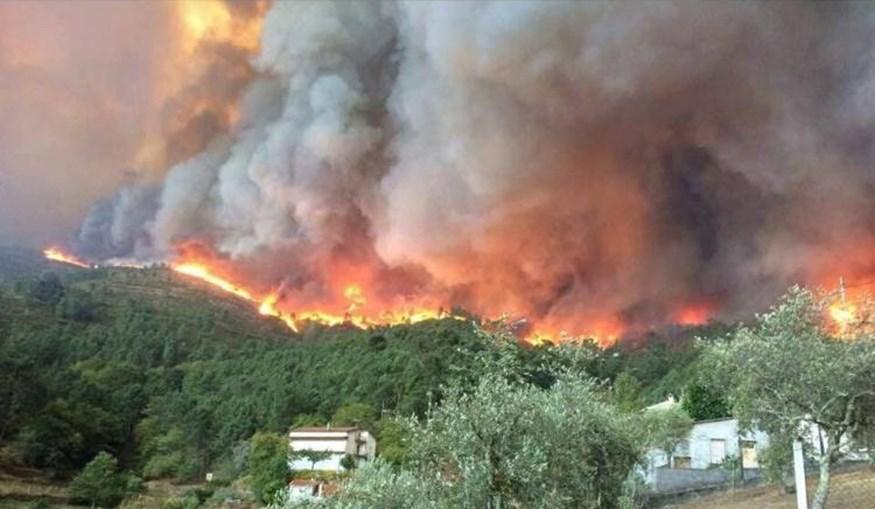 Incêndio no concelho de Mação