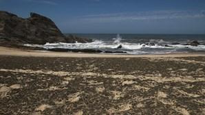 Descargas de espuma negra poluem praias da Marinha Grande