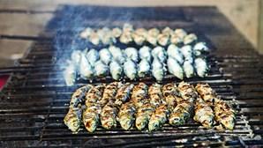 Semana promove carapau e sardinha em Setúbal