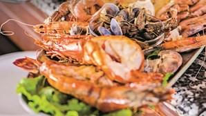 Matosinhos faz um elogio aos sabores do mar