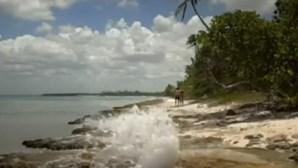 Pornhub lança filme para combater poluição nos oceanos