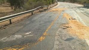 Um morto e um ferido em colisão rodoviária na EN254 em Évora