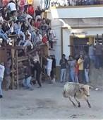 Jovem de 25 anos colhido por touro nas festas de Barrancos