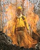 Os incêndios na Amazónia aumentaram este ano e preocupam o Mundo