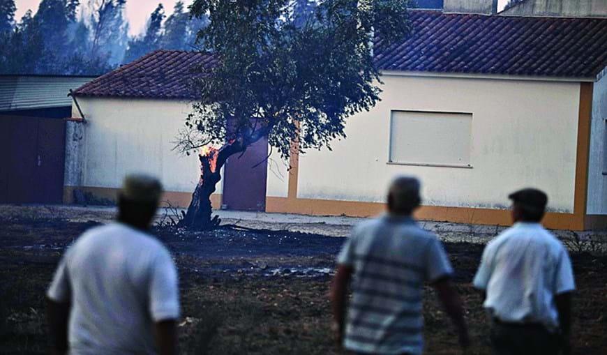 Chamas alastraram a árvores junto a casas