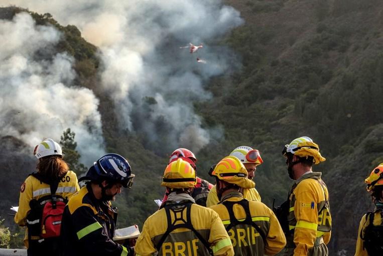 Duas mil pessoas retiradas devido a incêndio na ilha de Gran Canária