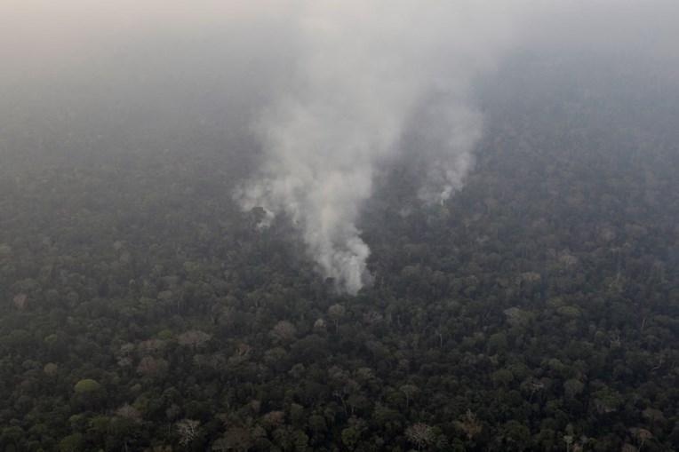 Amazónia fustigada pelos incêndios