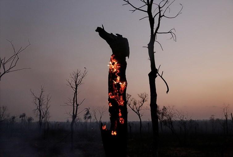 Incêndios na Bolívia