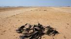 Seca fez deslocar para a Namíbia pelo menos 10 mil angolanos nos últimos três meses