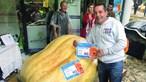Agricultor cultiva abóbora gigante com 450 quilos. É a maior de Portugal