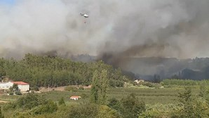 Incêndio em Alcobaça ameaça casas e mobiliza mais de 140 bombeiros