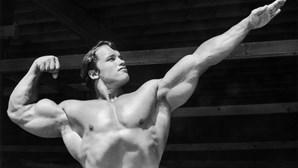"""""""Corpos de plástico"""", o submundo da testosterona e dos anabolizantes para aumentar os músculos"""