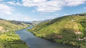 Ouvir Bryan Ferry de copo na mão com vista para o Douro