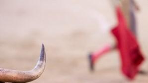 Deputada propõe que tauromaquia deixe de estar representada no Conselho Nacional de Cultura