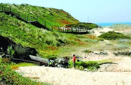 Caso registado entre as praias do Cabo do Mundo e do Aterro