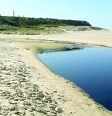 Mancha negra invadiu areia de zona não balnear