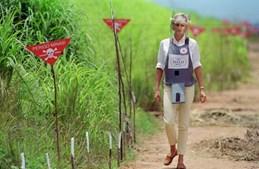 Em Janeiro de 1997, Diana de Gales deslocou-se a em Angola em missão pela retirada das minas terrestres nos campos de guerra