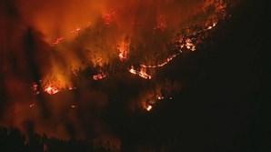 Incêndio descontrolado em Miranda do Corvo