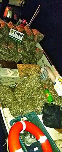 Travada captura ilegal de berbigão em Olhão