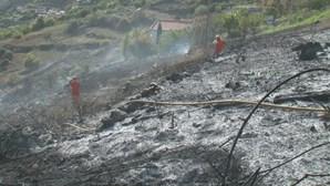 Queimada provoca incêndio na Madeira